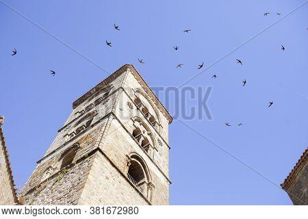 Swifts Flying Over Torre Julia Of Santa Maria La Mayor Church, Trujillo, Spain