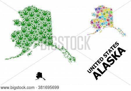 Vector Marijuana Mosaic And Solid Map Of Alaska State. Map Of Alaska State Vector Mosaic For Hemp Le