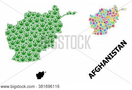 Vector Hemp Mosaic And Solid Map Of Afghanistan. Map Of Afghanistan Vector Mosaic For Hemp Legalize