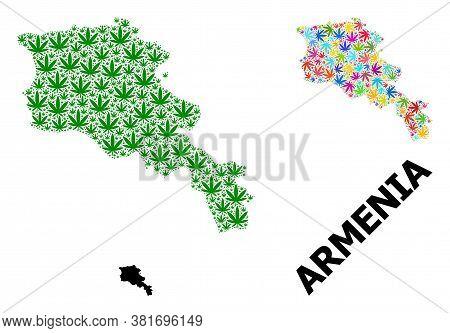 Vector Hemp Mosaic And Solid Map Of Armenia. Map Of Armenia Vector Mosaic For Hemp Legalize Campaign