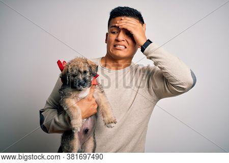 Young handsome latin man holding cute puppy pet over isolated white background stressed with hand on head, shocked with shame and surprise face, angry and frustrated. Fear and upset for mistake.