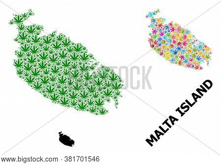 Vector Weed Mosaic And Solid Map Of Malta Island. Map Of Malta Island Vector Mosaic For Cannabis Leg