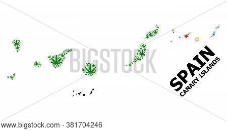 Vector Weed Mosaic And Solid Map Of Canary Islands. Map Of Canary Islands Vector Mosaic For Weed Leg