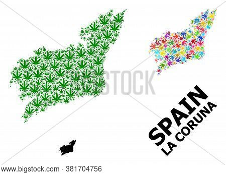 Vector Weed Mosaic And Solid Map Of La Coruna Province. Map Of La Coruna Province Vector Mosaic For