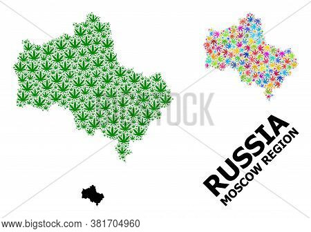 Vector Weed Mosaic And Solid Map Of Moscow Region. Map Of Moscow Region Vector Mosaic For Weed Legal