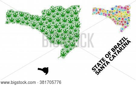 Vector Hemp Mosaic And Solid Map Of Santa Catarina State. Map Of Santa Catarina State Vector Mosaic