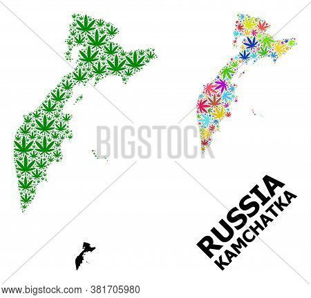 Vector Weed Mosaic And Solid Map Of Kamchatka Peninsula. Map Of Kamchatka Peninsula Vector Mosaic Fo