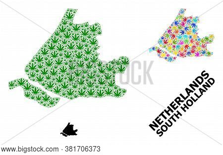 Vector Weed Mosaic And Solid Map Of South Holland. Map Of South Holland Vector Mosaic For Weed Legal