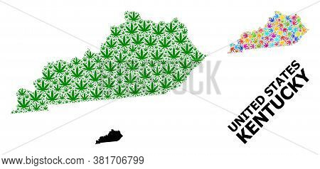 Vector Weed Mosaic And Solid Map Of Kentucky State. Map Of Kentucky State Vector Mosaic For Weed Leg