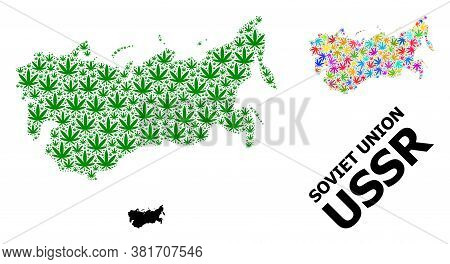 Vector Weed Mosaic And Solid Map Of Ussr. Map Of Ussr Vector Mosaic For Weed Legalize Campaign. Map