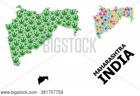 Vector Hemp Mosaic And Solid Map Of Maharashtra State. Map Of Maharashtra State Vector Mosaic For He