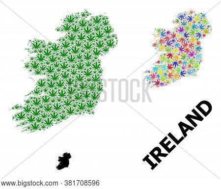 Vector Hemp Mosaic And Solid Map Of Ireland Island. Map Of Ireland Island Vector Mosaic For Hemp Leg