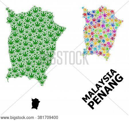 Vector Cannabis Mosaic And Solid Map Of Penang Island. Map Of Penang Island Vector Mosaic For Weed L