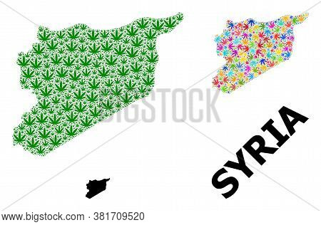 Vector Weed Mosaic And Solid Map Of Syria. Map Of Syria Vector Mosaic For Hemp Legalize Campaign. Ma
