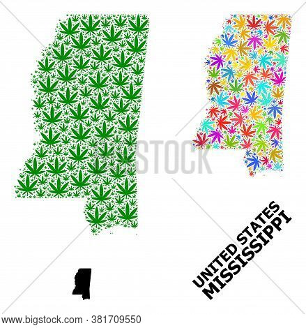 Vector Cannabis Mosaic And Solid Map Of Mississippi State. Map Of Mississippi State Vector Mosaic Fo
