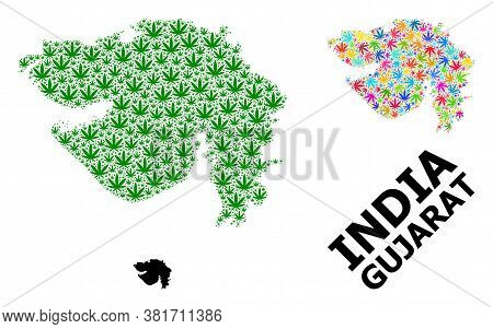 Vector Hemp Mosaic And Solid Map Of Gujarat State. Map Of Gujarat State Vector Mosaic For Marijuana