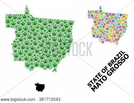 Vector Hemp Mosaic And Solid Map Of Mato Grosso State. Map Of Mato Grosso State Vector Mosaic For He