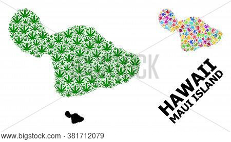 Vector Hemp Mosaic And Solid Map Of Maui Island. Map Of Maui Island Vector Mosaic For Hemp Legalize