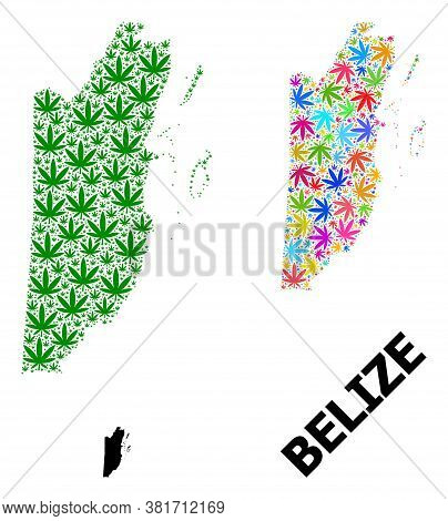 Vector Weed Mosaic And Solid Map Of Belize. Map Of Belize Vector Mosaic For Hemp Legalize Campaign.