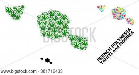 Vector Hemp Mosaic And Solid Map Of Tahiti And Moorea Islands. Map Of Tahiti And Moorea Islands Vect