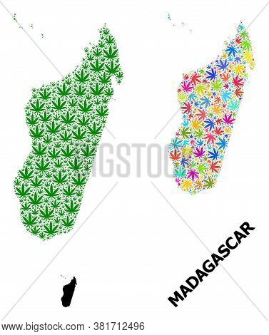 Vector Hemp Mosaic And Solid Map Of Madagascar Island. Map Of Madagascar Island Vector Mosaic For Dr