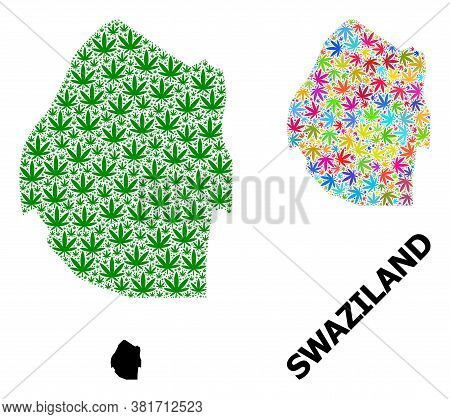 Vector Weed Mosaic And Solid Map Of Swaziland. Map Of Swaziland Vector Mosaic For Cannabis Legalize