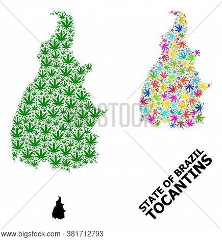 Vector Weed Mosaic And Solid Map Of Tocantins State. Map Of Tocantins State Vector Mosaic For Weed L