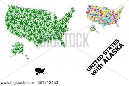 Vector Weed Mosaic And Solid Map Of Usa And Alaska. Map Of Usa And Alaska Vector Mosaic For Cannabis