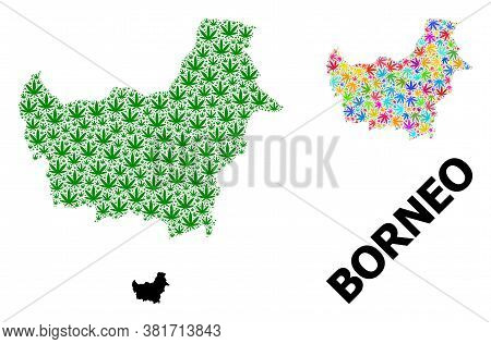Vector Weed Mosaic And Solid Map Of Borneo Island. Map Of Borneo Island Vector Mosaic For Weed Legal