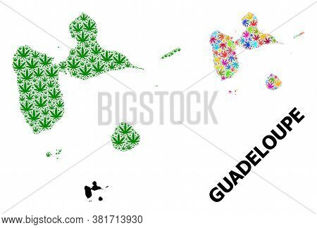 Vector Weed Mosaic And Solid Map Of Guadeloupe. Map Of Guadeloupe Vector Mosaic For Weed Legalize Ca