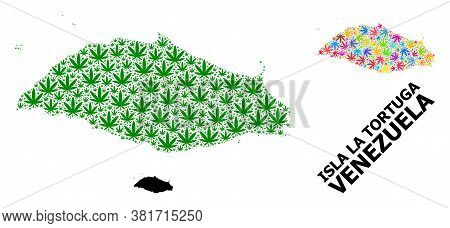 Vector Cannabis Mosaic And Solid Map Of Isla La Tortuga. Map Of Isla La Tortuga Vector Mosaic For Ma