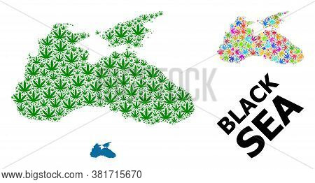 Vector Weed Mosaic And Solid Map Of Black Sea. Map Of Black Sea Vector Mosaic For Weed Legalize Camp