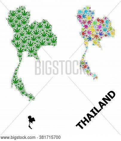 Vector Marijuana Mosaic And Solid Map Of Thailand. Map Of Thailand Vector Mosaic For Marijuana Legal