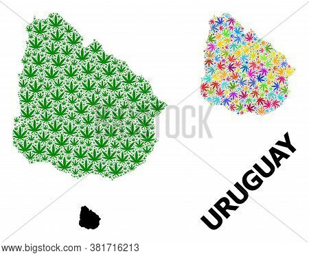 Vector Weed Mosaic And Solid Map Of Uruguay. Map Of Uruguay Vector Mosaic For Weed Legalize Campaign