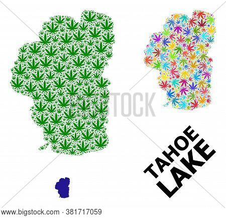 Vector Weed Mosaic And Solid Map Of Tahoe Lake. Map Of Tahoe Lake Vector Mosaic For Weed Legalize Ca