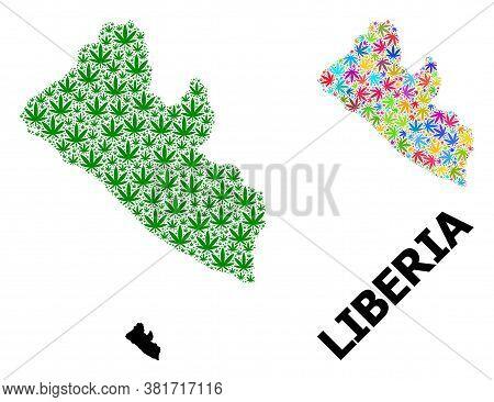 Vector Marijuana Mosaic And Solid Map Of Liberia. Map Of Liberia Vector Mosaic For Weed Legalize Cam