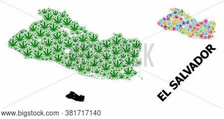 Vector Weed Mosaic And Solid Map Of El Salvador. Map Of El Salvador Vector Mosaic For Weed Legalize