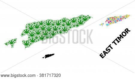 Vector Weed Mosaic And Solid Map Of East Timor. Map Of East Timor Vector Mosaic For Weed Legalize Ca