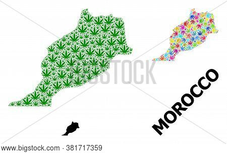 Vector Weed Mosaic And Solid Map Of Morocco. Map Of Morocco Vector Mosaic For Cannabis Legalize Camp