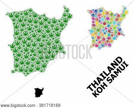 Vector Marijuana Mosaic And Solid Map Of Koh Samui. Map Of Koh Samui Vector Mosaic For Cannabis Lega