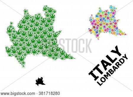Vector Marijuana Mosaic And Solid Map Of Lombardy Region. Map Of Lombardy Region Vector Mosaic For W
