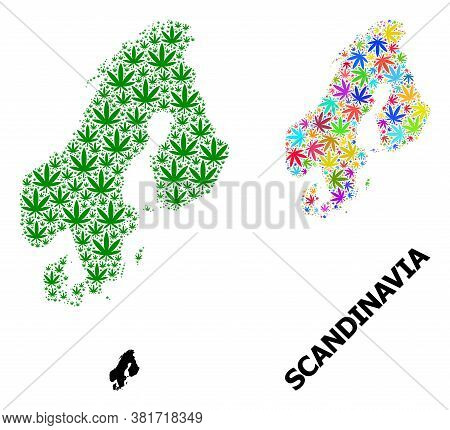Vector Cannabis Mosaic And Solid Map Of Scandinavia. Map Of Scandinavia Vector Mosaic For Cannabis L