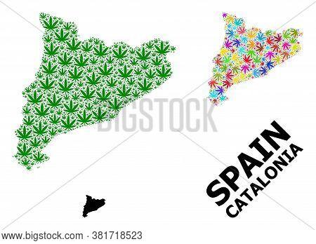 Vector Marijuana Mosaic And Solid Map Of Catalonia. Map Of Catalonia Vector Mosaic For Marijuana Leg