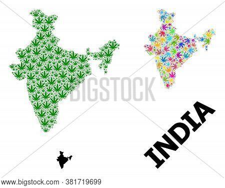 Vector Marijuana Mosaic And Solid Map Of India. Map Of India Vector Mosaic For Marijuana Legalize Ca