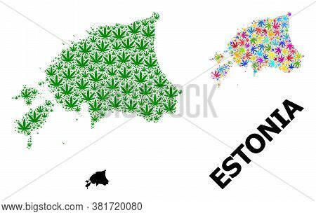 Vector Hemp Mosaic And Solid Map Of Estonia. Map Of Estonia Vector Mosaic For Hemp Legalize Campaign