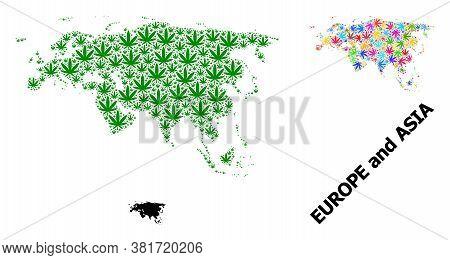 Vector Marijuana Mosaic And Solid Map Of Europe And Asia. Map Of Europe And Asia Vector Mosaic For M