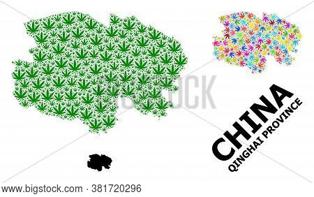 Vector Weed Mosaic And Solid Map Of Qinghai Province. Map Of Qinghai Province Vector Mosaic For Mari