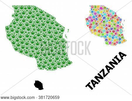 Vector Cannabis Mosaic And Solid Map Of Tanzania. Map Of Tanzania Vector Mosaic For Weed Legalize Ca