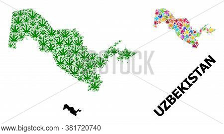 Vector Weed Mosaic And Solid Map Of Uzbekistan. Map Of Uzbekistan Vector Mosaic For Weed Legalize Ca