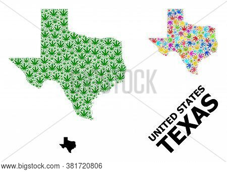 Vector Weed Mosaic And Solid Map Of Texas State. Map Of Texas State Vector Mosaic For Weed Legalize